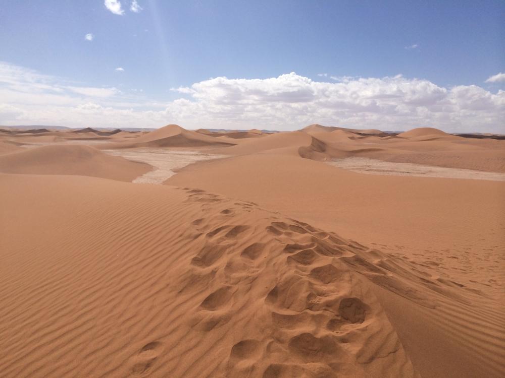 sand sahara